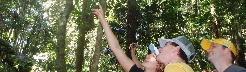 https://udu.com.au/wp-content/uploads/2014/07/sydney-day-tour-eco-tour-adventure-13.jpg
